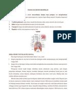 Fisiologi Respirasi.docx