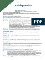 La célula procariota.pdf