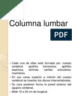 filosofia-lumbar.pptx