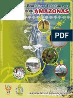 ZEE_Amazonas_2010.pdf