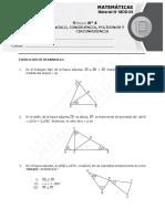 8656-Modulo N° 4 - Triángulos - 2017 (7%)