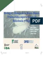mosca blanca.pdf