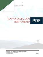 (03) Panorama Do Novo Testamento