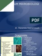 prktkm mikro Dermatophytosis