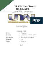 Universidad Nacional de Juliaca Telafinal