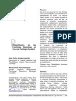 Dialnet-RehabilitacionDeLasFuncionesEjecutivasEnCasoDePato-3987647.pdf