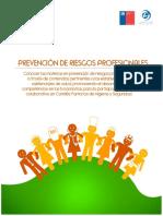 Manual Prevención de riesgos profesionales