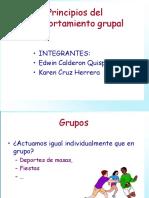 Principios de Comportamiento Grupal
