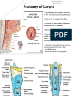 1. Anatomy of Larynx - Wai Sheng Xuan Batch 3 1101A11688