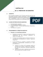 CAPITULO VII Procedimientos en Prestación Garantias