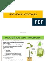 FITOHORMONAS seminario.ppt