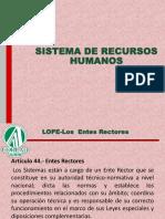SISTEMA DE RECURSOS HUMANOS.pdf