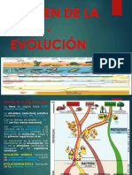 Origen de La Vida - Evolución