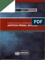 Compilación de Jurisprudencia en Justicia Penal Juvenil