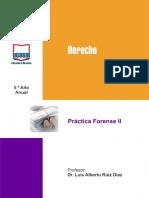 Practica Forense 2 DIAZ