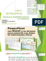 power pivot .pdf