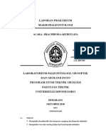 laporan-brachiopoda1.doc