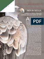 Primo Piano - il grifone in Sicilia.pdf