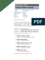 Curriculum Vitae Hector Cachique Vasquez