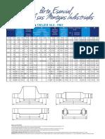 Bridas150.pdf