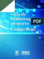 Guia Maternidad-Codigo Rojo_7A