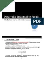 Desarrollo Sustentable Rural