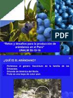 Retos y Desafios de Produccion de Arandanos en El Perú UNALM 30-10-16