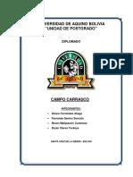 271964227-Informe-Final-Carrasco.docx
