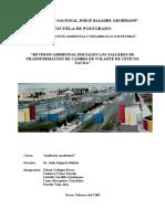Revisión Ambiental Inicial Lt 220kv y Se Ac