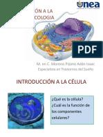138365764-INTRODUCCION-A-LA-PSICOFARMACOLOGIA.pdf
