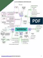 Goconqr - Roles y Responsabilidades de Los Administradores Del Gemba
