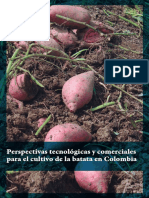 Perspectivas Tecnológicas y Comerciales Para El Cultivo de La Batata en Colombia