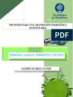 Opciones Para Una Transición Energética Sustentable Por Jazmin Flores