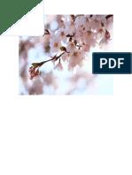 dependencia del peru.pdf