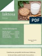 Peng Diet Rendah Laktosa