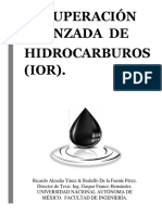 Recuperación Avanzada de Hidrocarburos (IOR).pdf