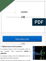 Amebiasis-inmunologia