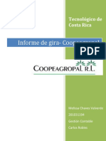 95056196 Informe de Gira Coopeagropal