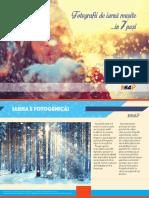 Mini-ghid_fotografii de iarna reusite_F64.pdf