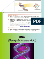DNA Notes.ppt