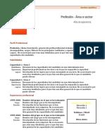 curriculum-vitae-modelo1c-marron.doc