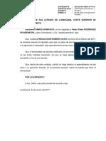 Escrito 1-2017 Demanda Ejecuc