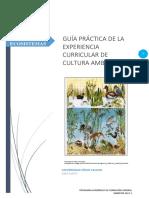 GUIA PRACTICA 2.docx