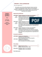 MODELO - Curriculum Vitae.doc