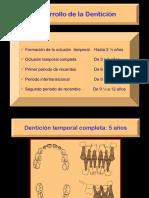 Handout Desarrolo Denticion