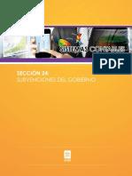 seccion24 Subvenciones gobierno.pdf