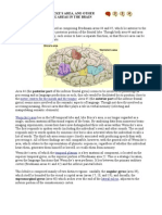 BROCA'S AREA , WERNICKE'S AREA, AND OTHER LANGUAGE-PROCESSING AREAS IN THE BRAIN