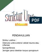 striktur Urethrae