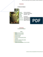 Fruticultura -  a Cultura Do Abacaxi