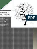 Portafolio - Copia (2)